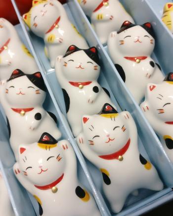 Gatitos que flotan